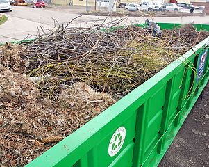 Cheap Dumpster Rental Cheap Roll Off Dumpsters for yard waste