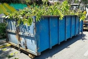 Cheap Dumpster Rentals for Yard Waste & Landscape Projects